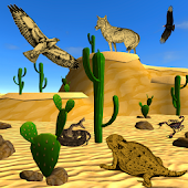 Desert Creatures Discovery