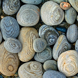 by Keith Sutherland - Nature Up Close Rock & Stone