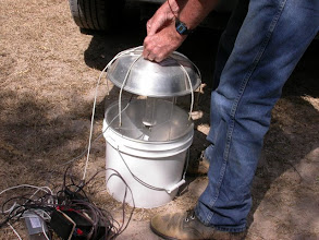Photo: Black light bucket trap with timer.