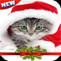 Christmas photo Frames New icon