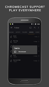 Pulsar Music Player Pro Mod Apk (Patcher) 7
