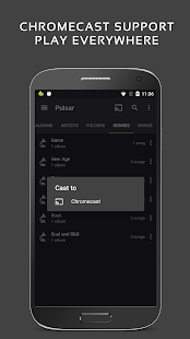 Pulsar Music Player Pro Screenshot