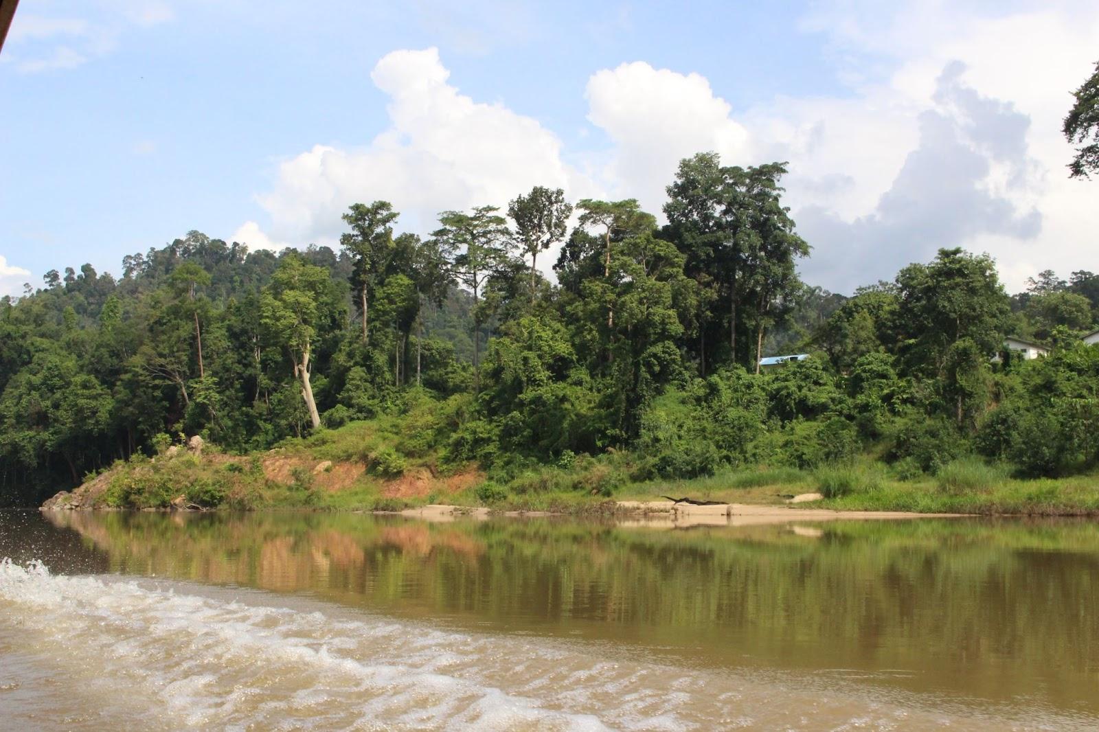Príroda v Malajzii