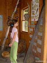 Photo: Checking out the displays at Groton Nature Center, near Boulder Beach State Park by Michelle Boucher