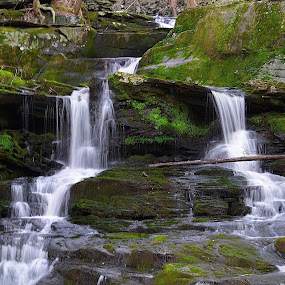 WATERFALLS by Doug Hilson - Landscapes Forests ( water, waterfalls, movement, forest, roicks,  )