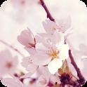 Sakura Live Wallpaper Plant icon