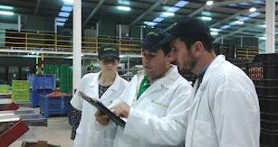 Técnicos del Coitaal en un almacén de confección de una empresa agroalimentaria almeriense.