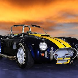 Cobra by JEFFREY LORBER - Transportation Automobiles ( jeffrey lorber, rust 'n chrome, cobra, car photos, blue car, shelby, car, ford, lorberphoto )