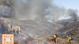 efectivos del infoca lucharon contrar las llamas el pasado fin de semana en la provincia de Almería.