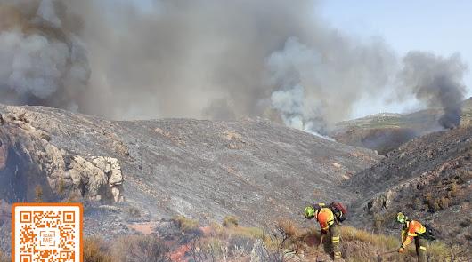 """Alerta por riesgo """"extremo"""" de incendios forestales en la provincia"""