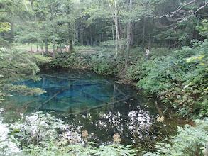Photo: 神の小池
