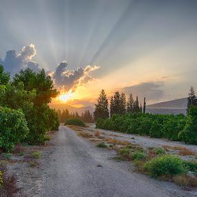 My Sunrise by Max Molenaar - Landscapes Sunsets & Sunrises ( hdr, landscaapes, sunrise, travel, places, #GARYFONGDRAMATICLIGHT, #WTFBOBDAVIS )