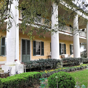 Southern Charm by Denise DuBos - Buildings & Architecture Public & Historical ( southern charm, columns, balconies, grace, houmas house plantation, shutters, gone with the wind )