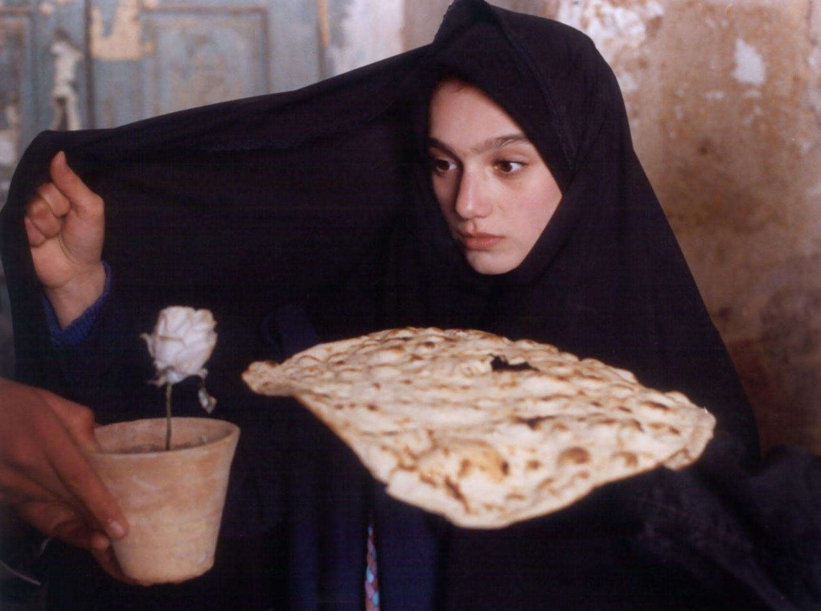 A Voyage Through Cinema: Iran–Truths and Lies