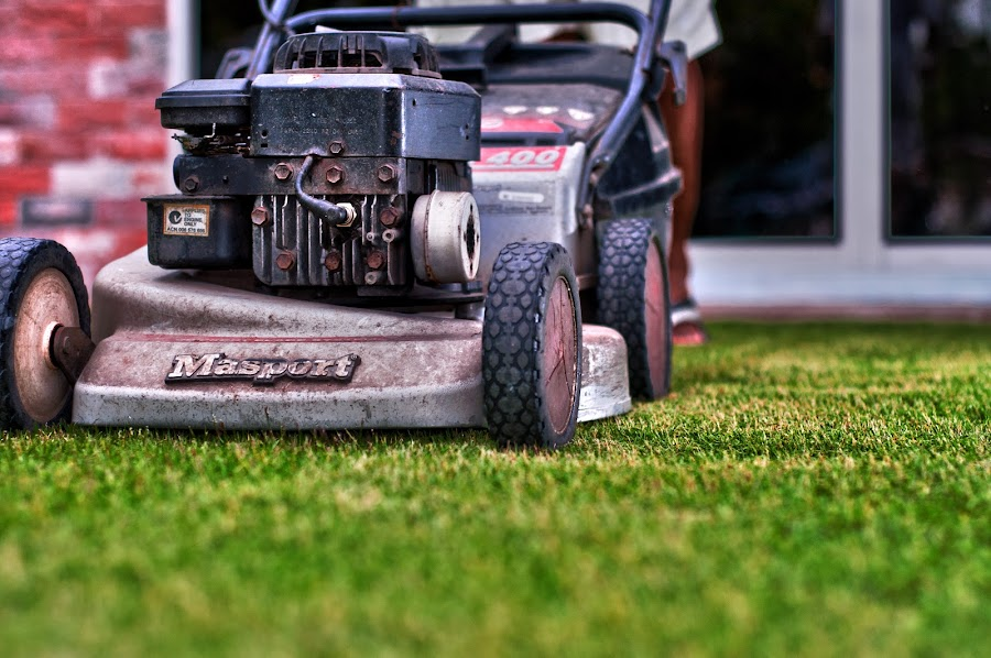 The Lawn Mower by Rashid Mohamad - Products & Objects Industrial Objects ( product, lawn mower, industrial, grass, masport )