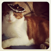 Photo: Cat with a mexican hat #intercer #mexico #cat #pet #cats #pets #meow #catsofinstagram #beautiful #cute #mexican #animal #picpets #sweet #kitty #kitten #catlovers #portrait #pretty #funny #paws #ears #fur #catstagram #eyes #hat - via Instagram, http://instagr.am/p/P0dFxlJftX/