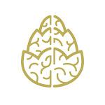 Cerebral Instant Knowledge