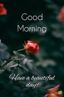 Good Morning - náhled