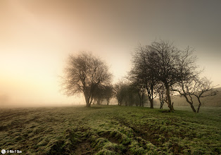 Photo: Breakthrough  There is that time of a cold morning, when the mist hangs heavy in the air and obscures your view but adds a different dimension to the land. You watch as the sun rises, haunted by the mist and fog but you can see its warmth at war with the air. You know at some point the sun will win and cast its light but as that war is fought you bask within the glow shrouded by the fog. Your breath may still float in streams from your mouth to intertwine with the air but you no longer feel the cold.  You understand why the sun sets, its to show the beauty of a sunrise.   Reworking of an older image I only ever had in monotones, it needed colour :)  Prints of this and my other work can be purchased on my SmugMug site here:http://mikefshaw.smugmug.com/