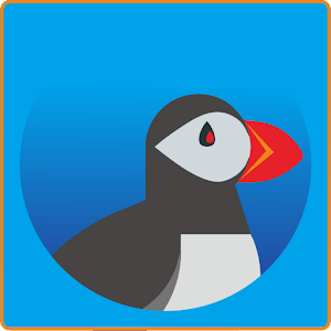 Secure Puffin Web Browser Reference 2018 for PC