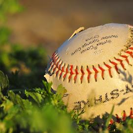 Aliya's tee ball game ~ by Danielle Freeman - Sports & Fitness Baseball