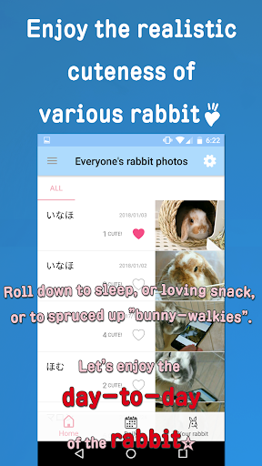 Rabbit Photos -- Bunny wallpaper, photo sharing... 3.00.0005 screenshots 2
