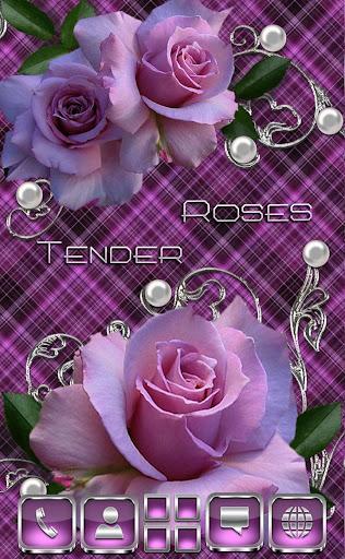 Tender Roses Go Launcher theme