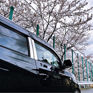 bB QNC21のカスタム事例画像 𝐌さんの2020年04月01日12:17の投稿