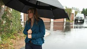 Blame It on the Rain thumbnail