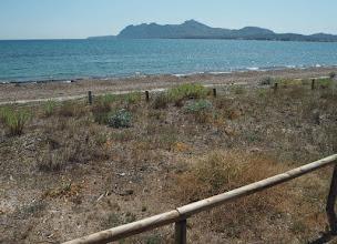 Photo: Luonnonsuojelualuetta matkalla Port de Pollensaan