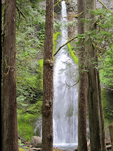Photo: Marymere Falls.