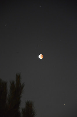 my red moon di cristal