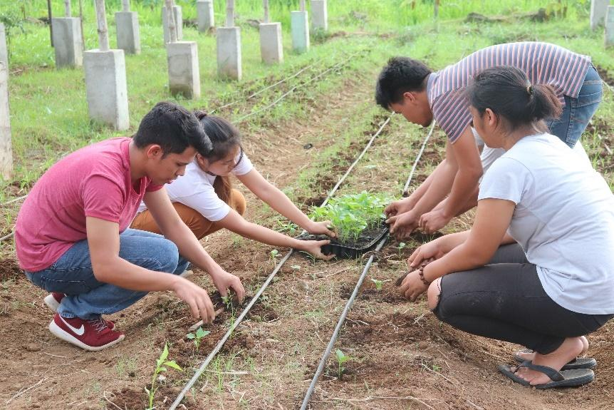VSU Horticulture about program