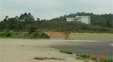 Photo: CHN-UR17 - The stadium/college site five years later. Fully stable with native plants established.