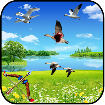 Birds shooter Angry Hunting