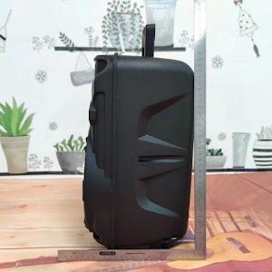Boxa portabila cu microfon, Bluetooth 80W, model PMPO KTS-1176
