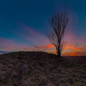 by M. Andersen - Landscapes Sunsets & Sunrises (  )