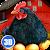 Euro Farm Simulator: Chicken file APK for Gaming PC/PS3/PS4 Smart TV