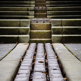 Gold Stairs by Scott Hemenway - City,  Street & Park  Neighborhoods