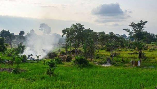 Marahoué National Park