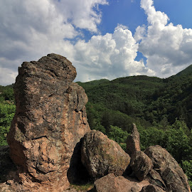 Rhodope mountain Bulgaria by Sergey Sokolov - Nature Up Close Rock & Stone ( steep, pile, rocky, scene, scenary, view, mountain, aspect, perspective, huge, highland, ridge, heap, height, centuries, knights, alp, countryside, medieval, peak, ancient, fortress, panorama, ruins, alpine, ages, outlook, landscape )