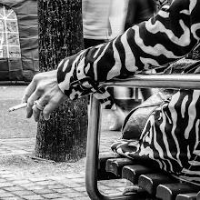 Photo: Smoking Zebra...  #zurichwalk2012