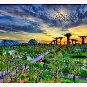Sunrise at Garden by the Bay by Jashper Delloroso - Landscapes Sunsets & Sunrises ( garden by the bay, the big dome, the super trees, sunrise, singapore, hdr,  )