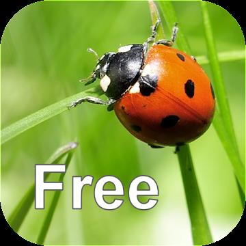 Nature Free - Europe Logo