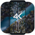 4K-Wallpapers-Auto-Wallpaper-Changer APK