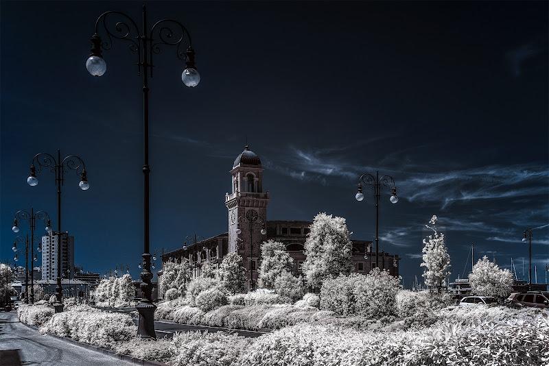 Winter in the city di Sara Jazbar