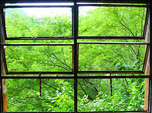 Photo: ventana al verde
