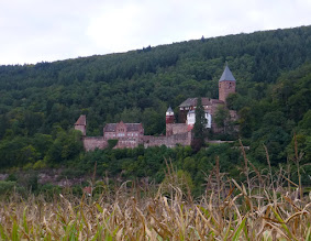 Photo: Burg Zwingenberg