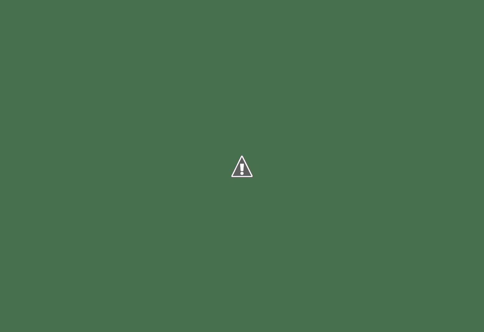 26.10.2017 - Girls run the world