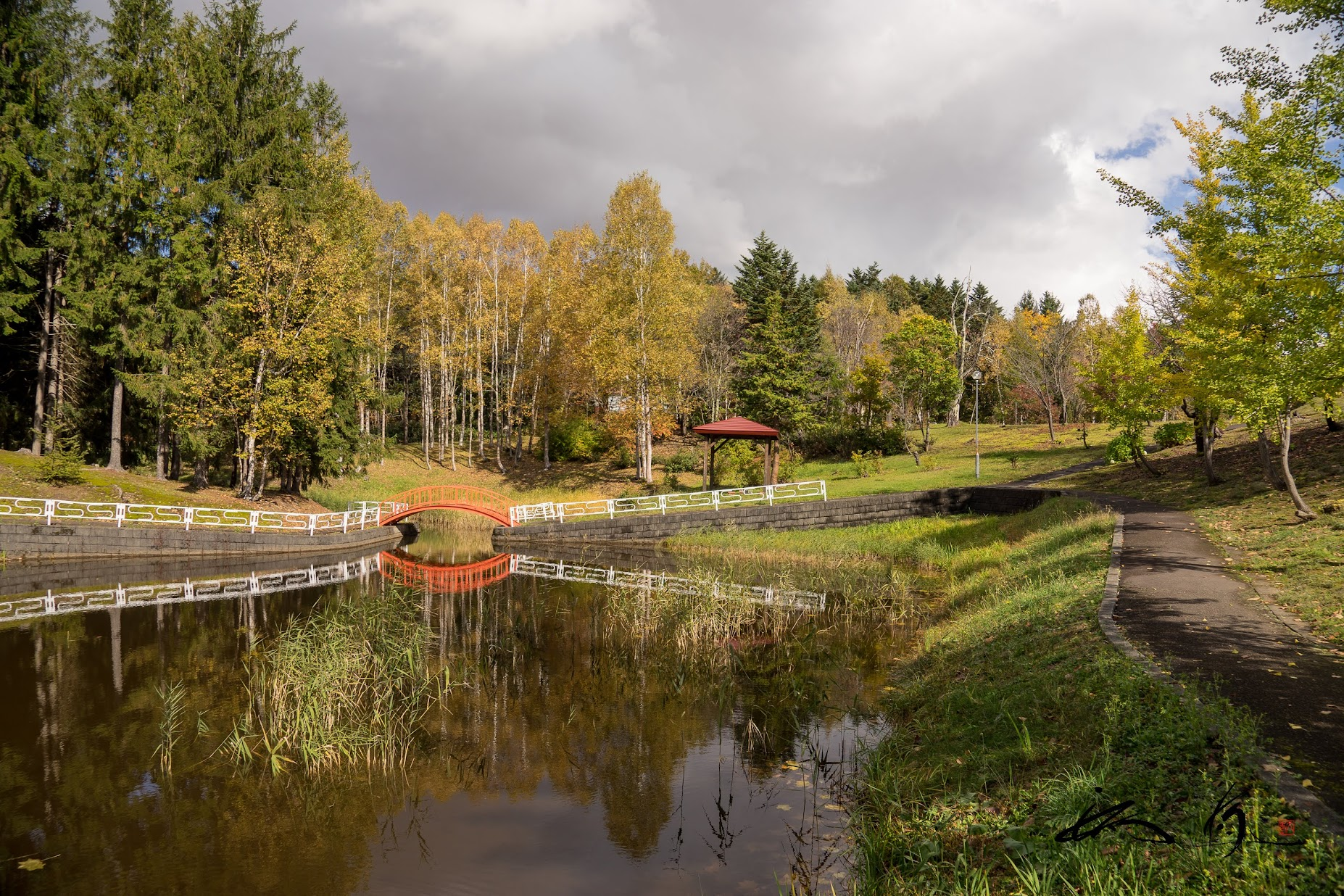 秋模様が池の水面に映り込むシンメトリーな風景